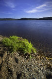 The shore of Coeur d'Alene Lake. Stock Images