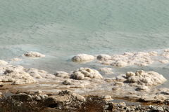 Shore of the Dead Sea - the sea of Sodom Royalty Free Stock Photos