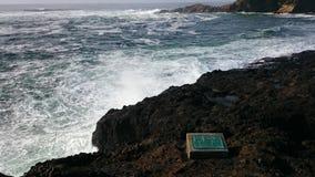 Shore at Depoe Bay stock image