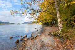Shore of Derwent Water in Autumn Stock Images