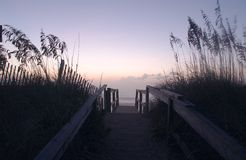 The Shore Dunes #1. The dunes at the ocean shore in the early morning Stock Photos
