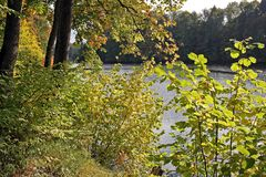 The shore in early autumn Royalty Free Stock Photos