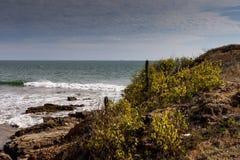 Shore in Ecuador. An unknown beach in Ecuador near Engabao Royalty Free Stock Photo