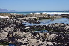 Shore at the feet of the table mountain. Photo taken in Cape Town Stock Images