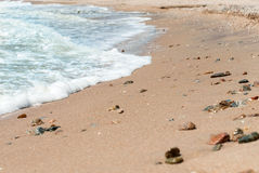 Shore, foamy wave in the summer day Stock Image