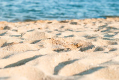 Shore, foamy wave in the summer day Stock Images