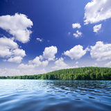 Shore of forest lake Royalty Free Stock Photo