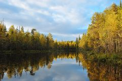 Early autumn on the forest lake. stock photography