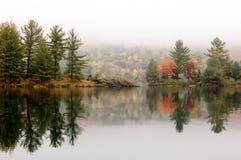 Shore of George Lake. In overcast day. Killarney Prov. Park stock photo