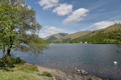 Shore of Grasmere Royalty Free Stock Images