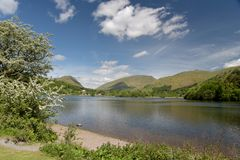 Shore of Grasmere Royalty Free Stock Image