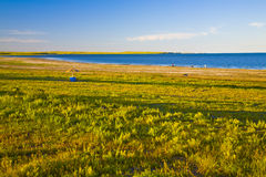 Shore with grass. A lake shore with grass around the lake hulun in the north of china Royalty Free Stock Photos