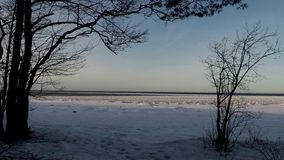 On the shore of the Gulf of Finland in winter.  stock video