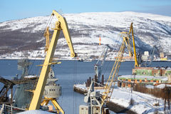 Shore of Kola Bay Stock Images