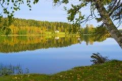The shore of lake - 2. The shore of beautiful lake. Finland Royalty Free Stock Image