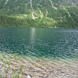 Shore of Lake. Bank of a mountain lake in Poland Stock Photos