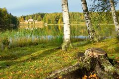 The shore of lake. The shore of beautiful lake. Finland Royalty Free Stock Photography