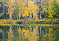 The shore of the lake on a calm misty autumn day. The view from the water Stock Photography