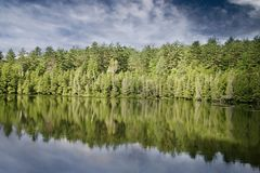 Shore, Lake, Forest, Bank Royalty Free Stock Photos