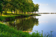 Shore of the lake. Near the green deciduous forest in summer Stock Photos