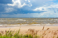 Shore of the Lake Peipus. Estonia Stock Images