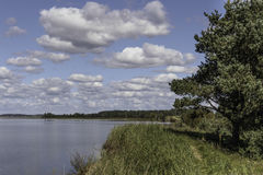The shore of the lake in the summer Royalty Free Stock Photography
