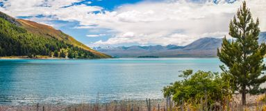 On the shore of Lake Tekapo in New Zealand. The turquoise waters of Lake Tekapo fringed by the Southern Alps in Canterbury, New Zealand on a fair summer day Royalty Free Stock Photo