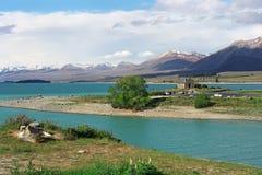 On the shore of Lake Tekapo. Royalty Free Stock Images