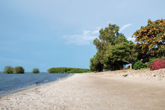 Shore of lake Victoria Royalty Free Stock Images