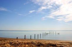 Shore landscape Stock Image