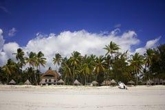 Shore line of Paje village, Zanzibar, Tanzania. This is a shore line with palm trees on Zanzibar island, Paje village, Tanzania Stock Images