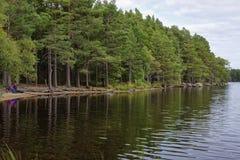 Shore of Loch Garten stock photos