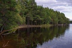 Shore of Loch Garten. Straithspey, Scotland, UK stock photo