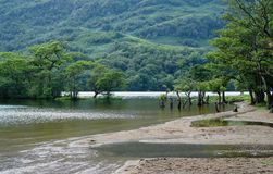 Shore of Loch Lomond Royalty Free Stock Photography