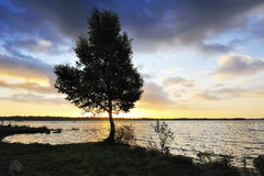 Shore Of Lough Ennell Royalty Free Stock Photos