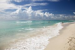 Shore in Miami Beach Stock Image
