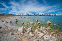Shore of Mono Lake in California Royalty Free Stock Image