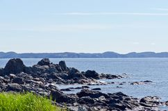 The shore of Newfoundland. Canada in sunny day stock photography