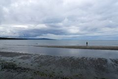 The shore of the northern bay in summer. royalty free stock photo