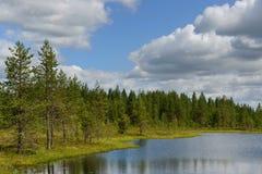 Shore of Northern lake Royalty Free Stock Image