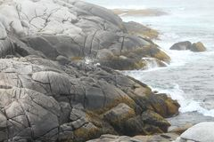Shore of Peggy`s Cove Nova Scotia stock photo