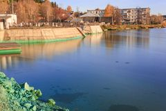 The shore of a pond infected with cyanobacteria. Blue-green algae is an ecological disaster royalty free stock photo