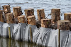 Shore protection at a lake Stock Image