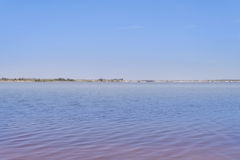 On the shore of Retba Lake (or Pink lake). On the shore of Retba Lake  (or Pink lake Royalty Free Stock Images