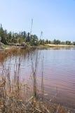 On the shore of Retba Lake (or Pink lake) Stock Photo