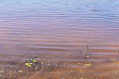 On the shore of Retba Lake (or Pink lake) Royalty Free Stock Photo