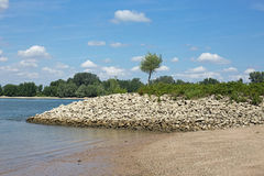 Shore of the Rhine (Rhein) Stock Images