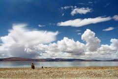 On the shore of Sacred Lake Rakshastal. On the shore of Sacred Lake Rakshastal 4541 meters above sea level in Western Tibet Stock Photography