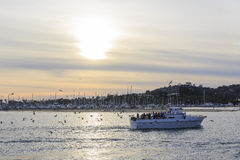 Shore at Santa Barbara, California Royalty Free Stock Photography