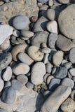 Shore Stone Stock Image